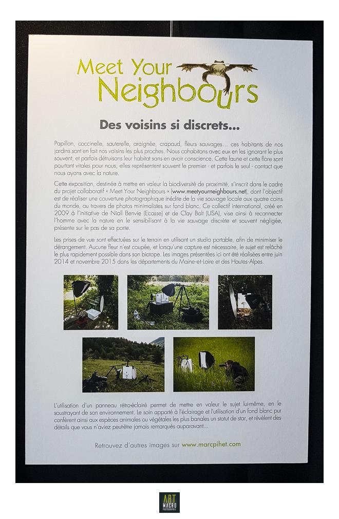 06102018-art-macrophotographie projet macro proxi meet your neighbours 3 marc pihet
