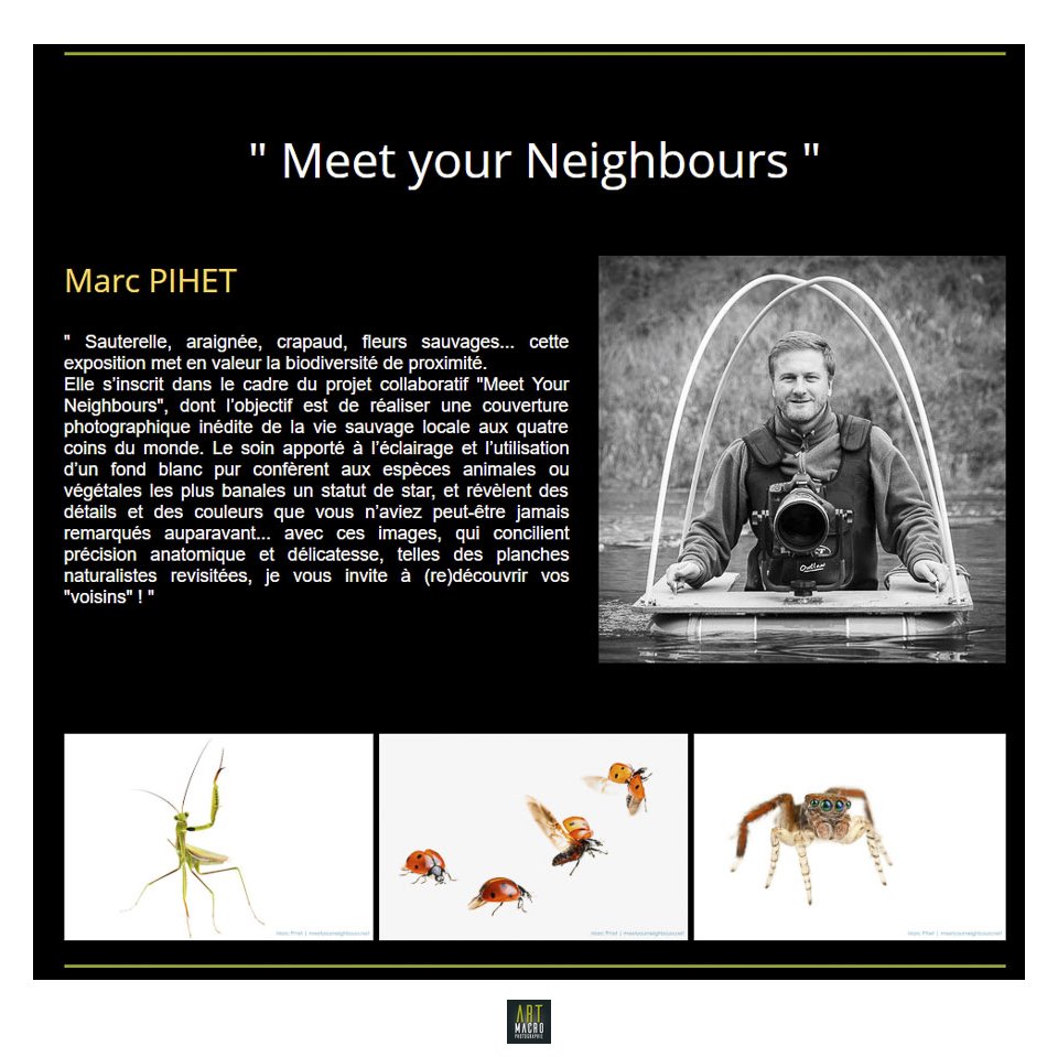 art-macrophotographie batracien projet macro proxi meet your neighbours fiche identite de marc pihet photographe nature