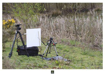 art macrophotographie projet macro proxi meet your neighbours set up-12