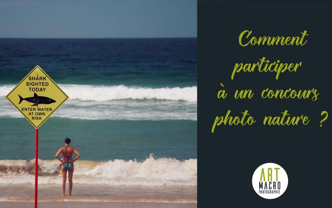 illustration-blog-art-macrophotographie-comment-participer-à-un-concours-photo-nature