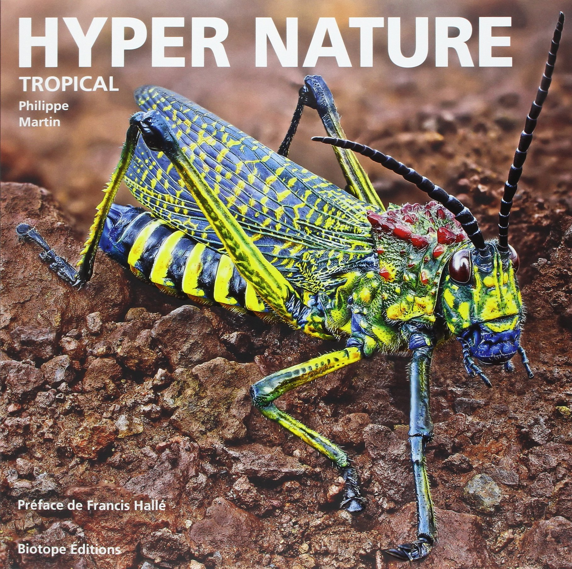 illustration ouvrage hyper nature focus stacking macrophotographie tropical