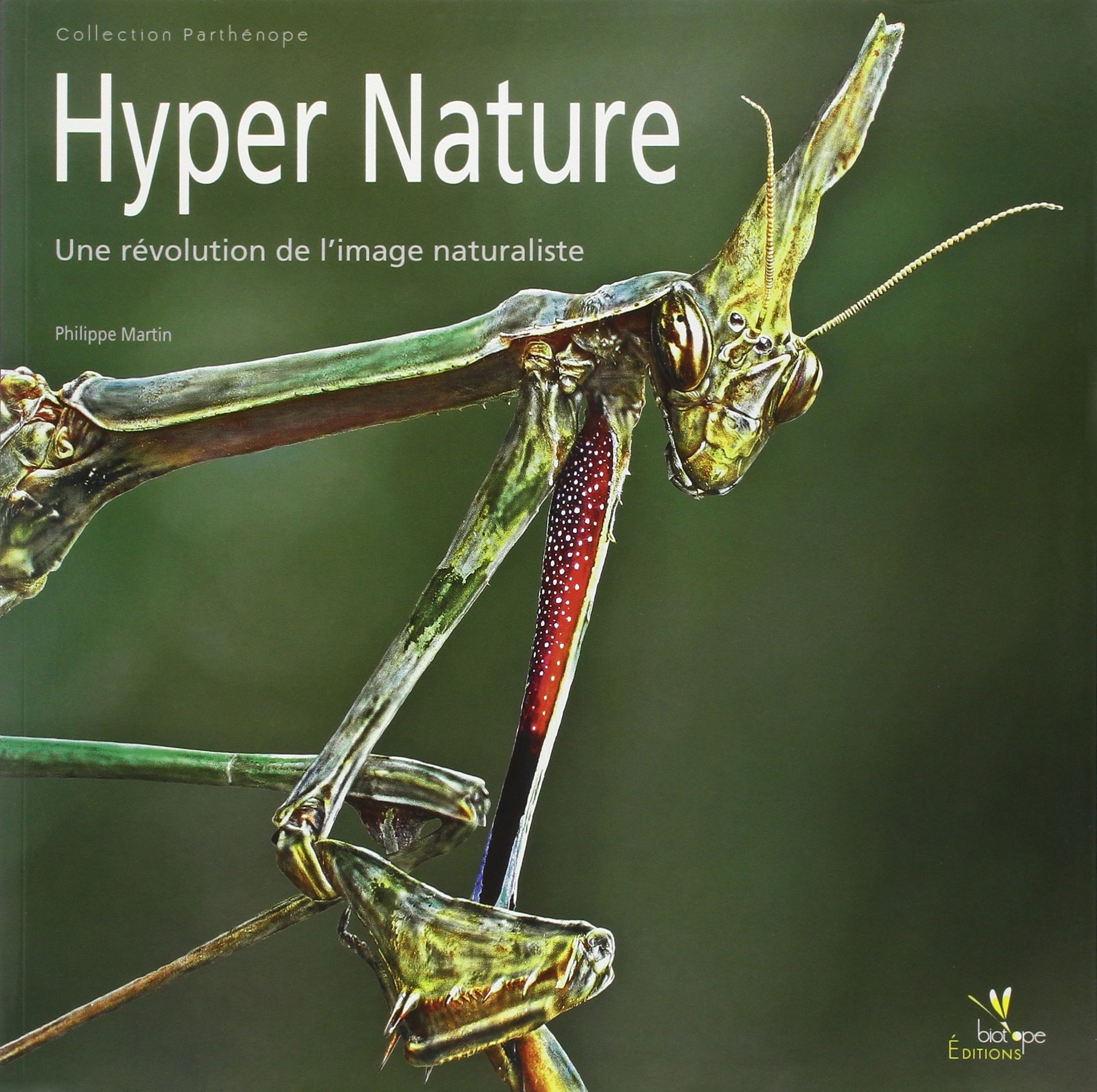 illustration ouvrage hyper nature focus stacking macrophotographie