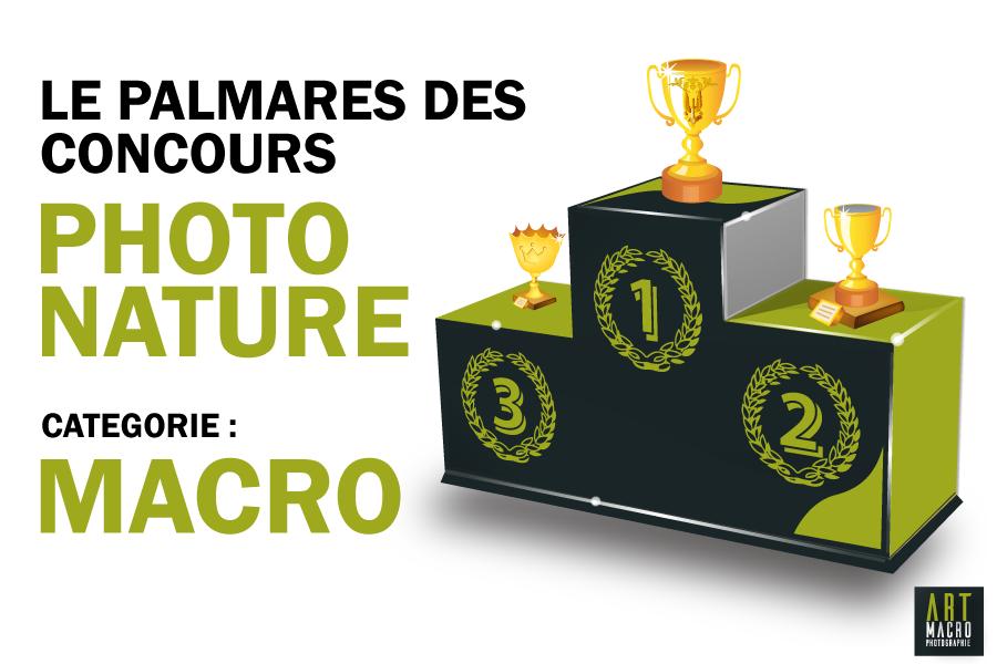 Le palmarès des concours photos nature et animalier en Macrophotographie