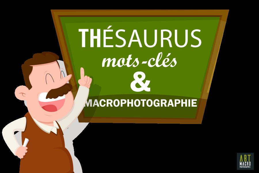 Thésaurus, mots clés et Macrophotographie